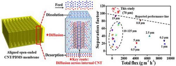 碳纳米管分离膜纯化醇类生物能源研究方面取得新进展