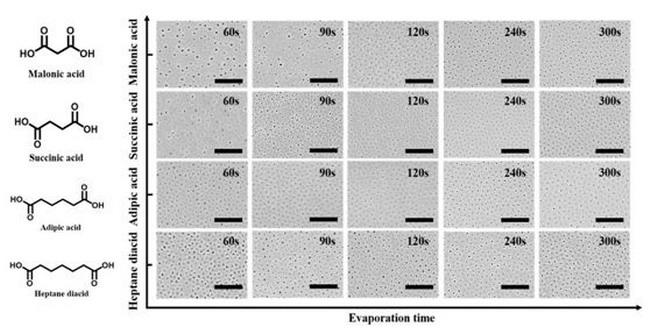浙工大膜水中心研究团队均孔膜稳定制备方面取得进展