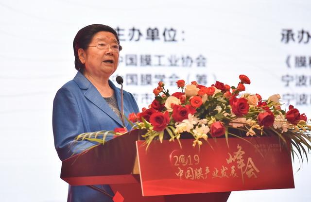 顧秀蓮列席2019中國膜家當發展峰會並對膜家當發展提出四點建議